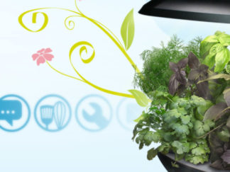 Webdesign site Aerogarden