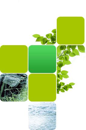 Conception design web site Ecofibres