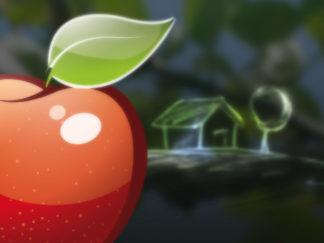Conception logo et webdesign site Eden Immo