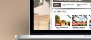 Webdesign The Portal (MSF)
