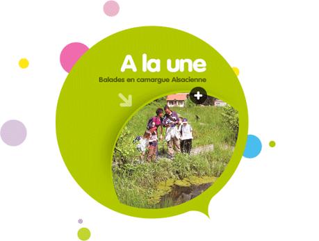 Design web site OT Saint-Louis