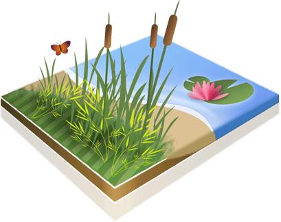 Icône Découvrir la nature