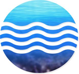Webdesign site Tropic Nguyen