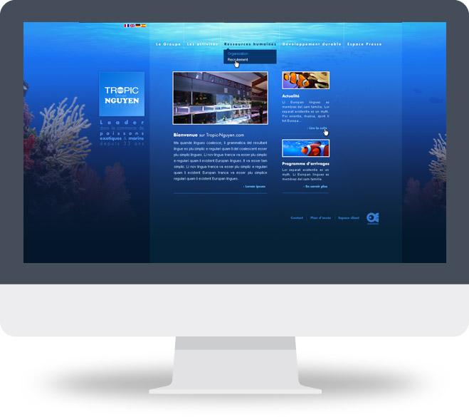 Page d'accueil site Tropic Nguyen
